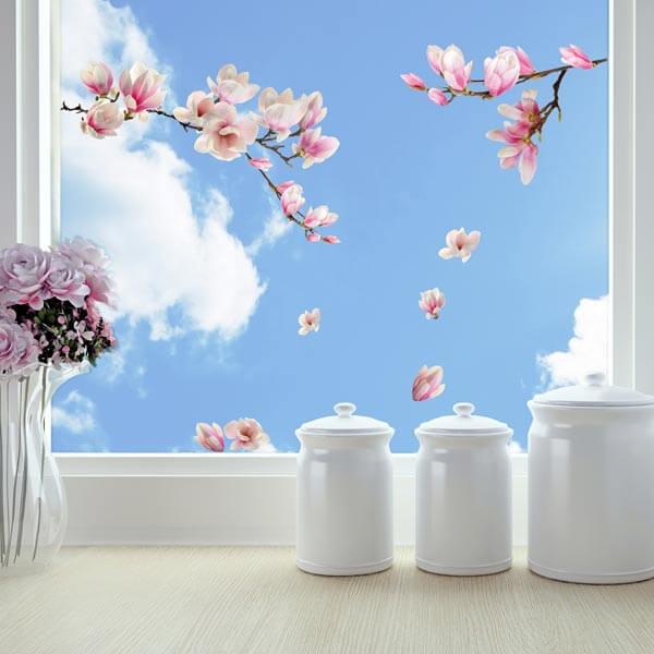 vetrofania - magnolia
