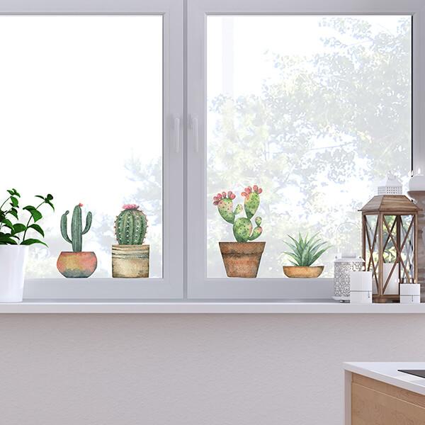 vetrofania - cactus