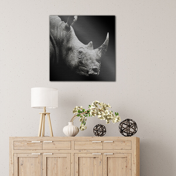 quadri in alluminio - Rhino 47x47