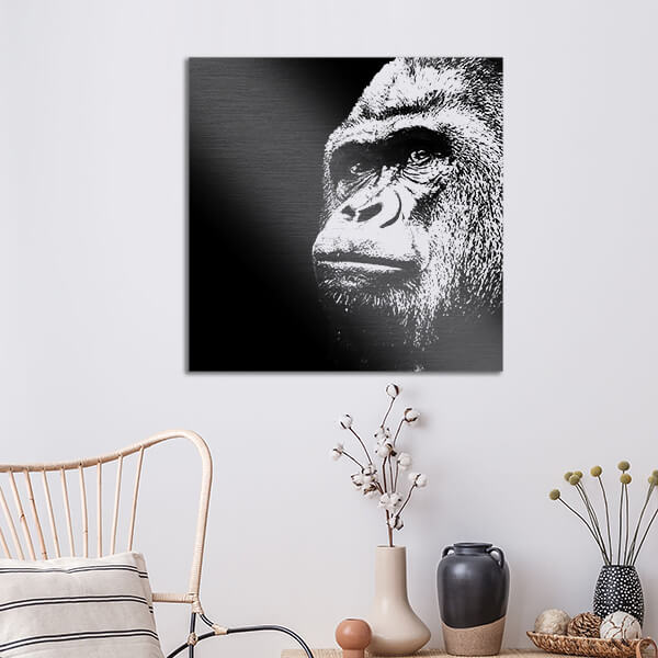 quadri in alluminio - Gorilla 47x47