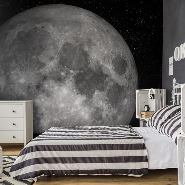fotomurale - luna